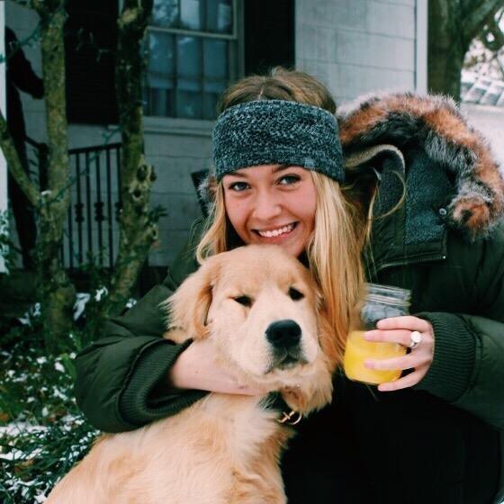 Ali's dog boarding