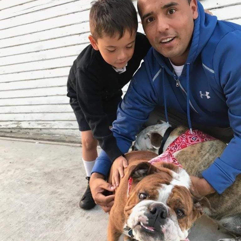 Fredy's dog day care