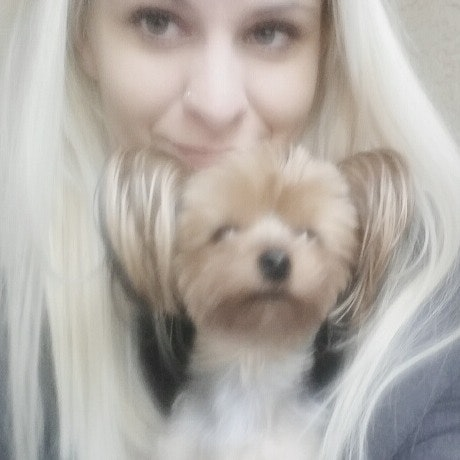 Zsofia's dog boarding