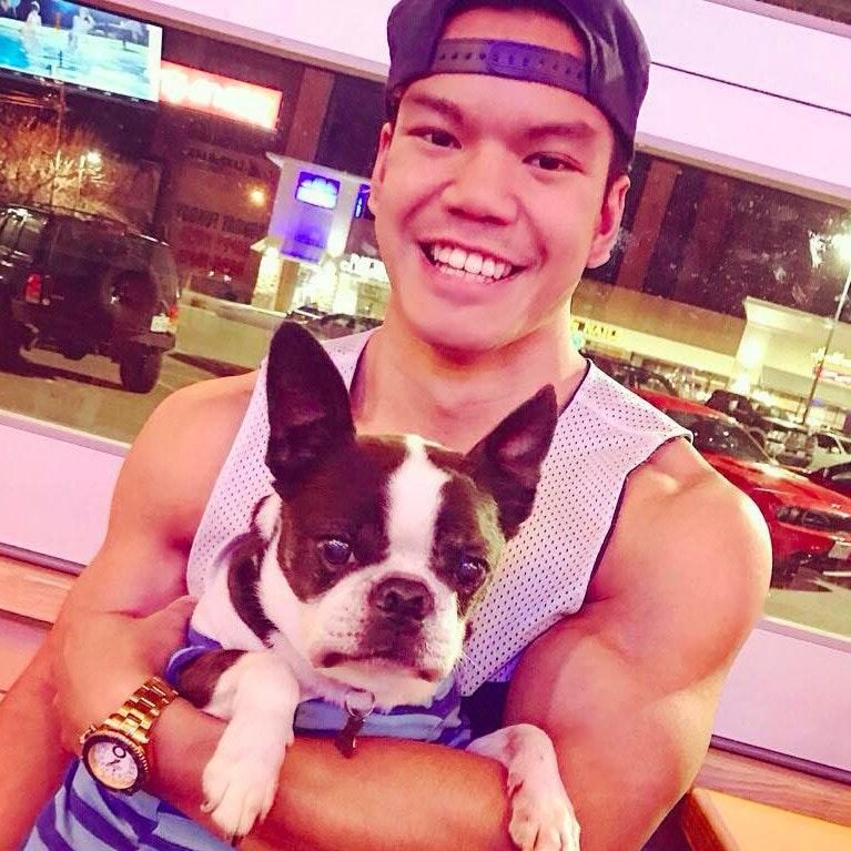 Austin's dog day care