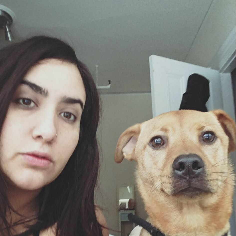 Veronica's dog boarding