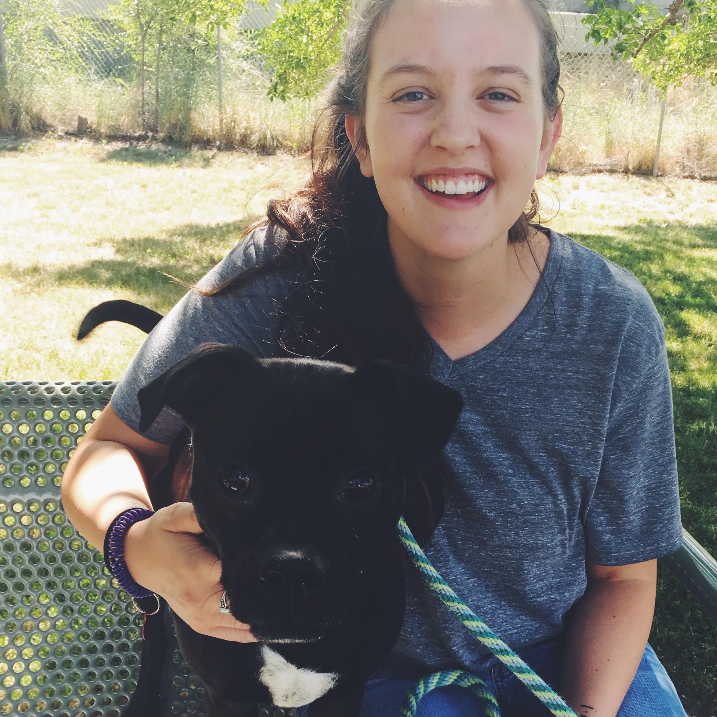 Katlynn's dog day care