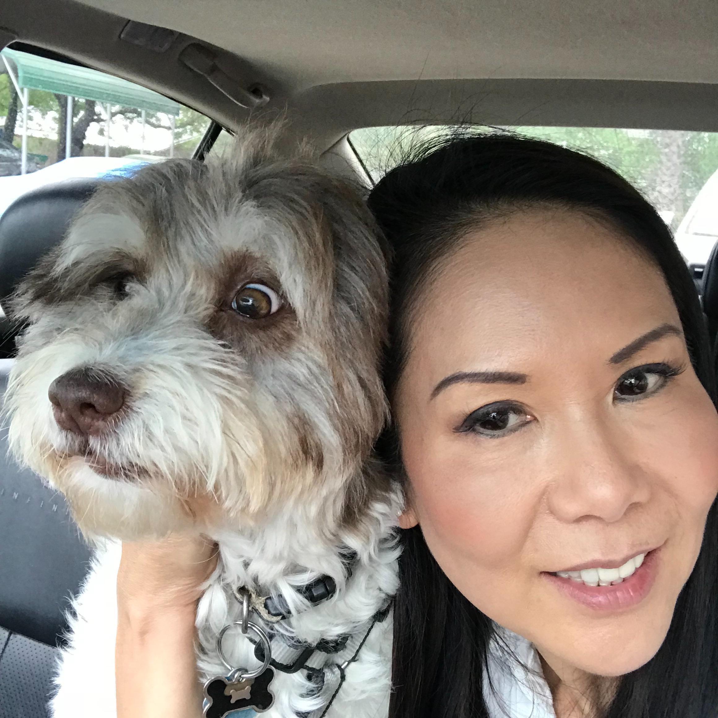 Marnie's dog day care