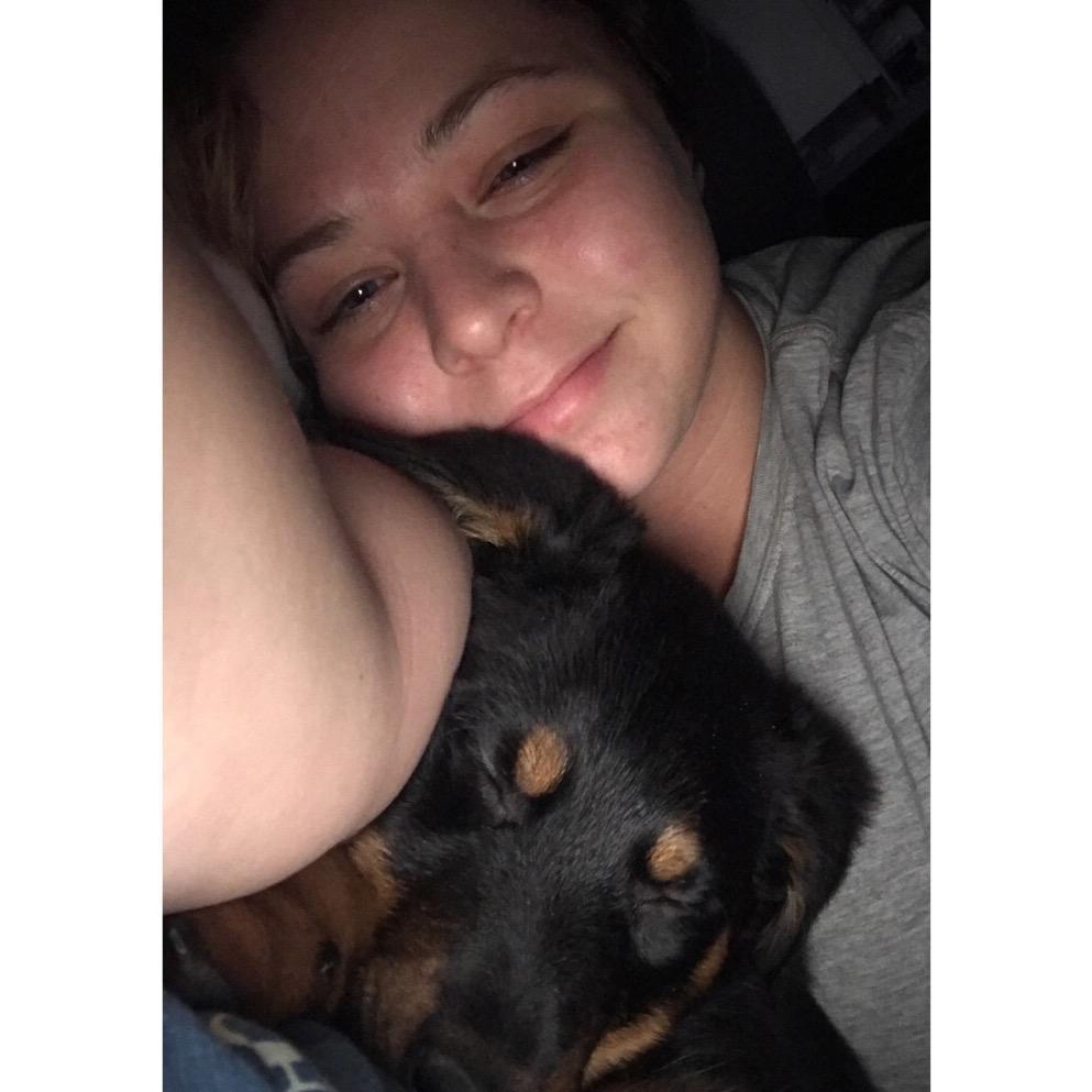 Randi's dog day care
