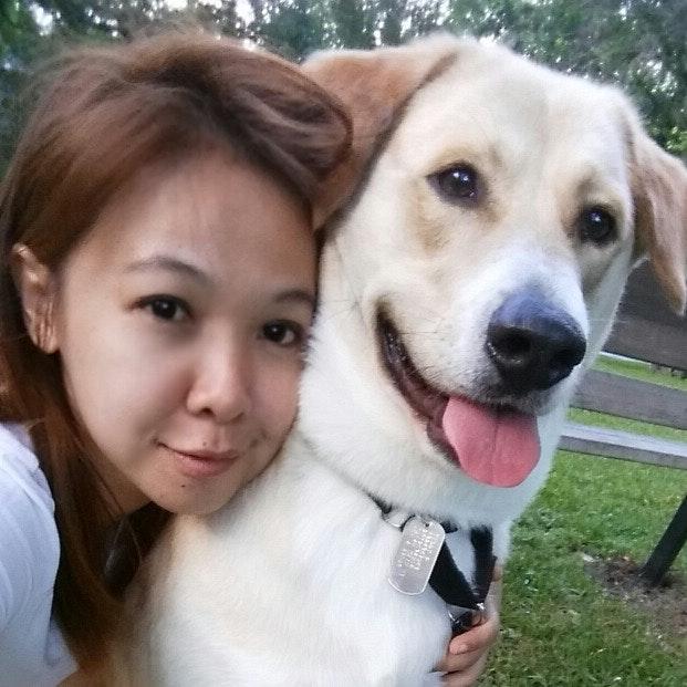 dog walker Tuckky
