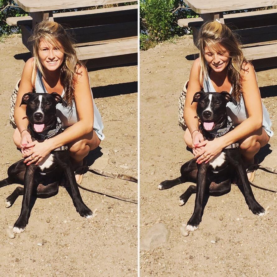 Tori's dog boarding