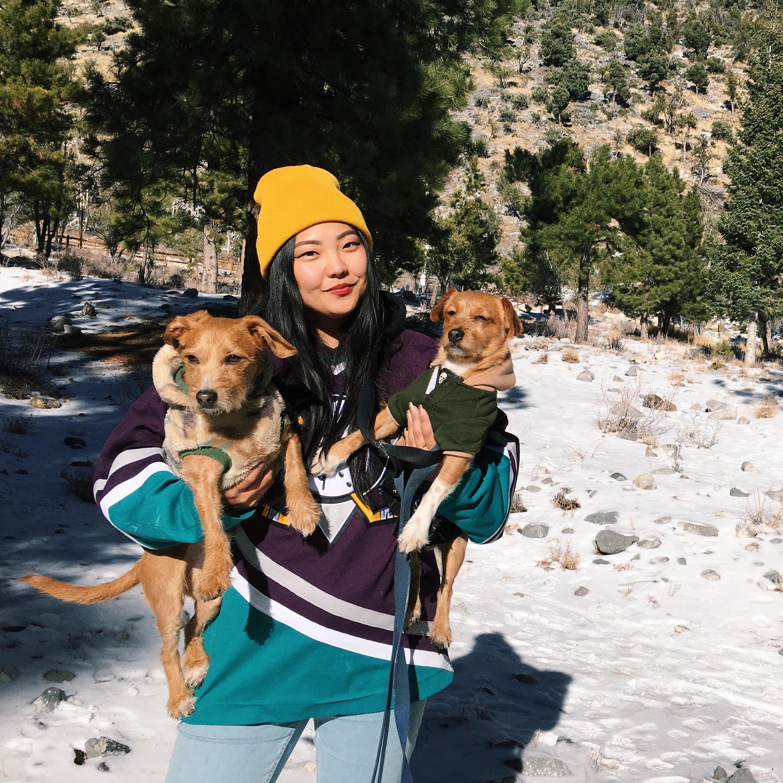 dog walker Heejin