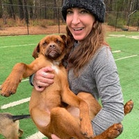 Courtney's dog day care