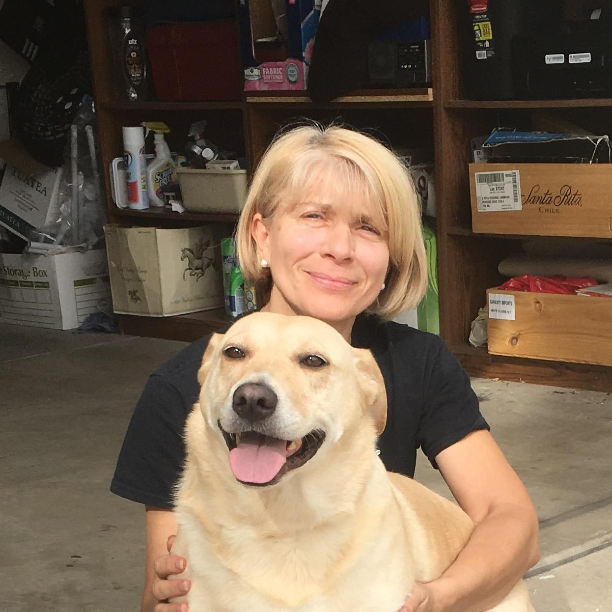 Olha's dog day care