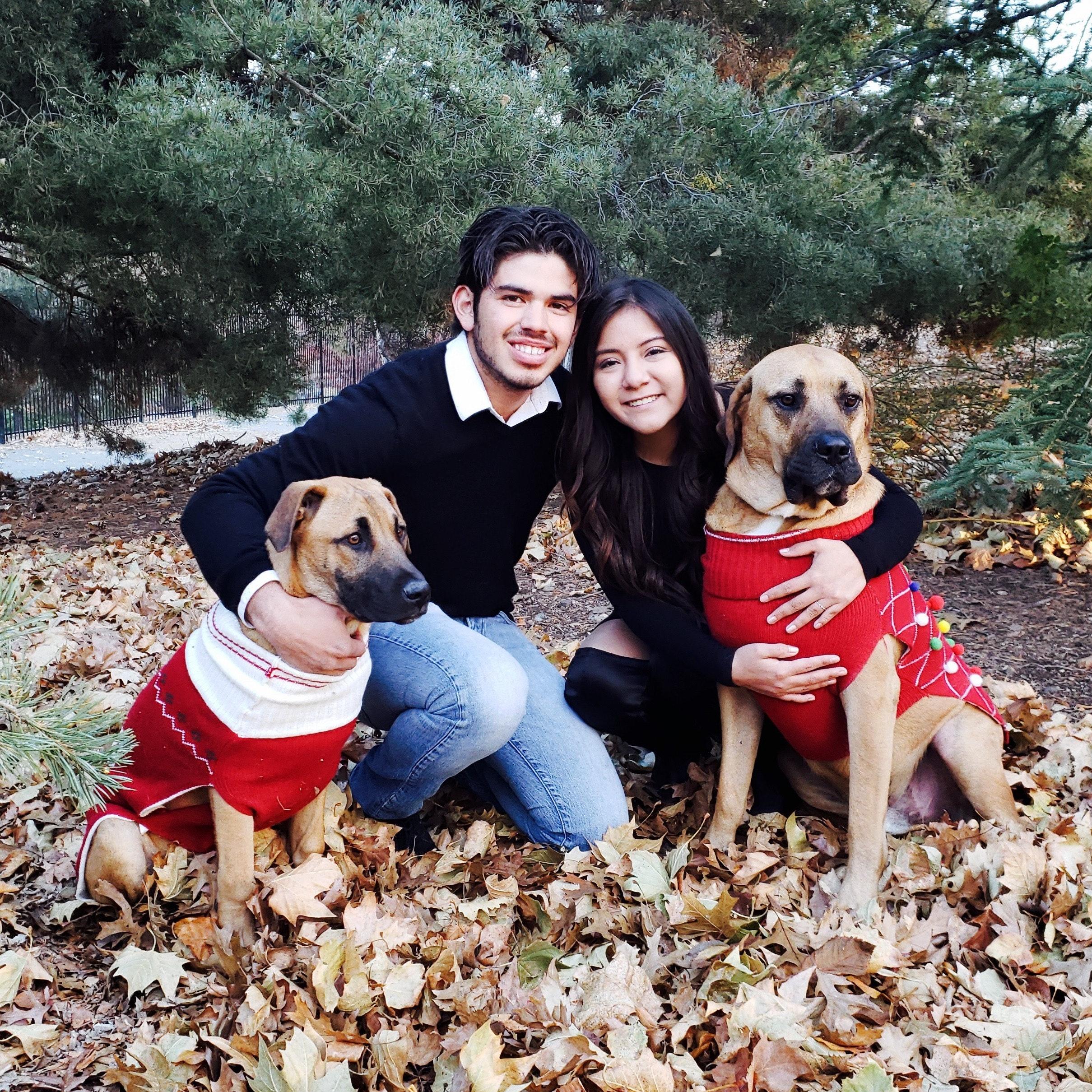 Keibi & Isaias's dog boarding