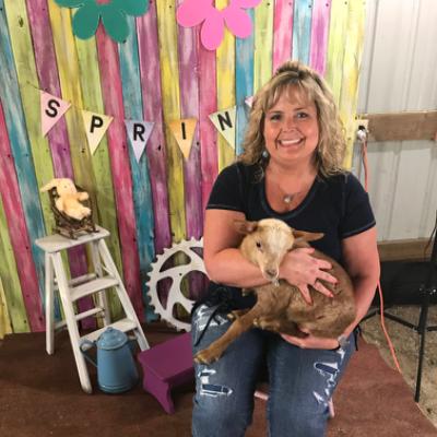 Gina's dog day care