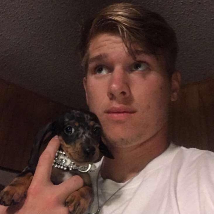 Mason's dog day care