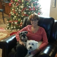Jan's dog day care
