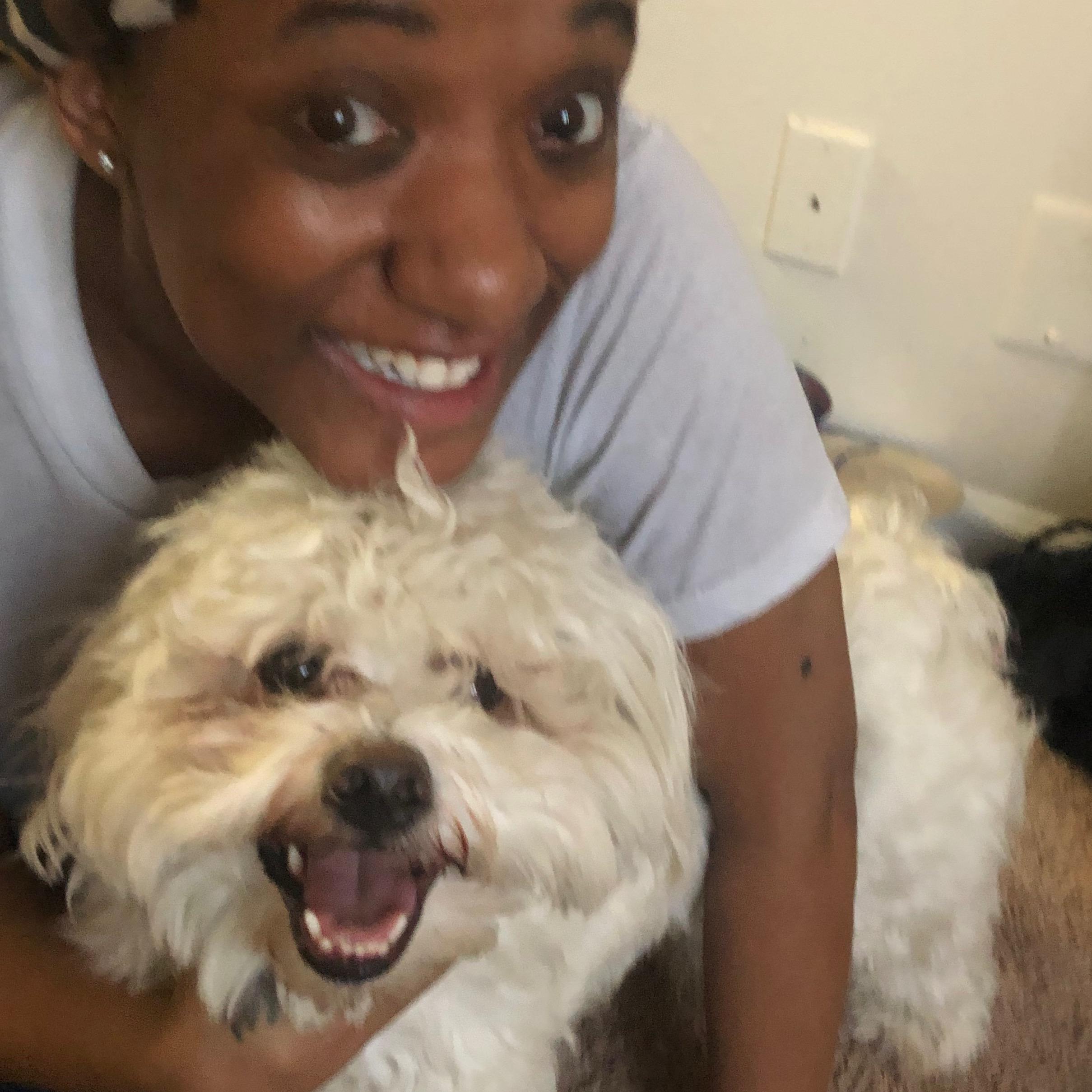 Ebony's dog day care
