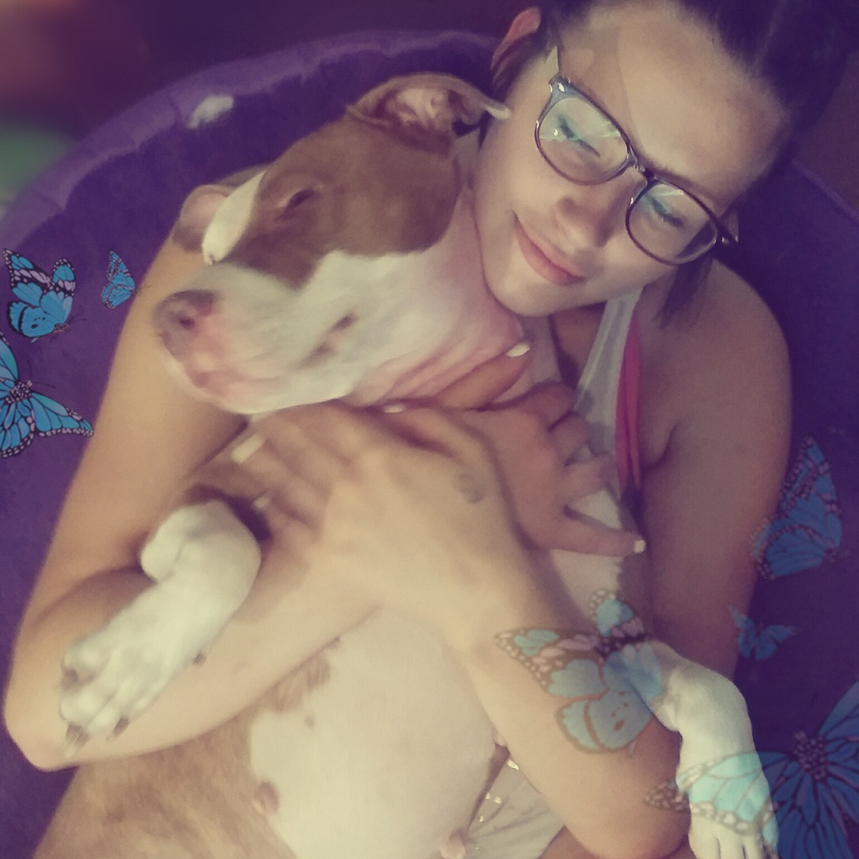 Destany's dog day care