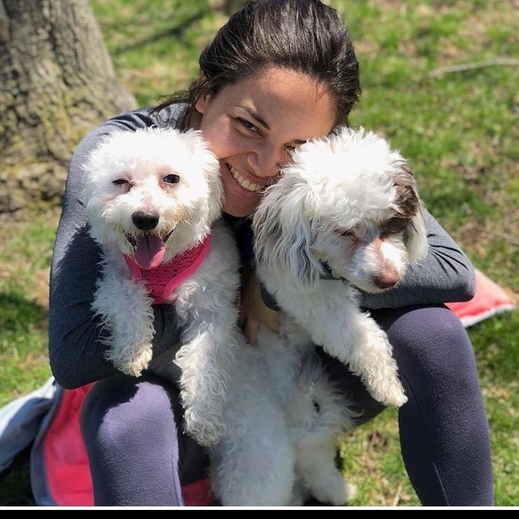 Silvana's dog day care