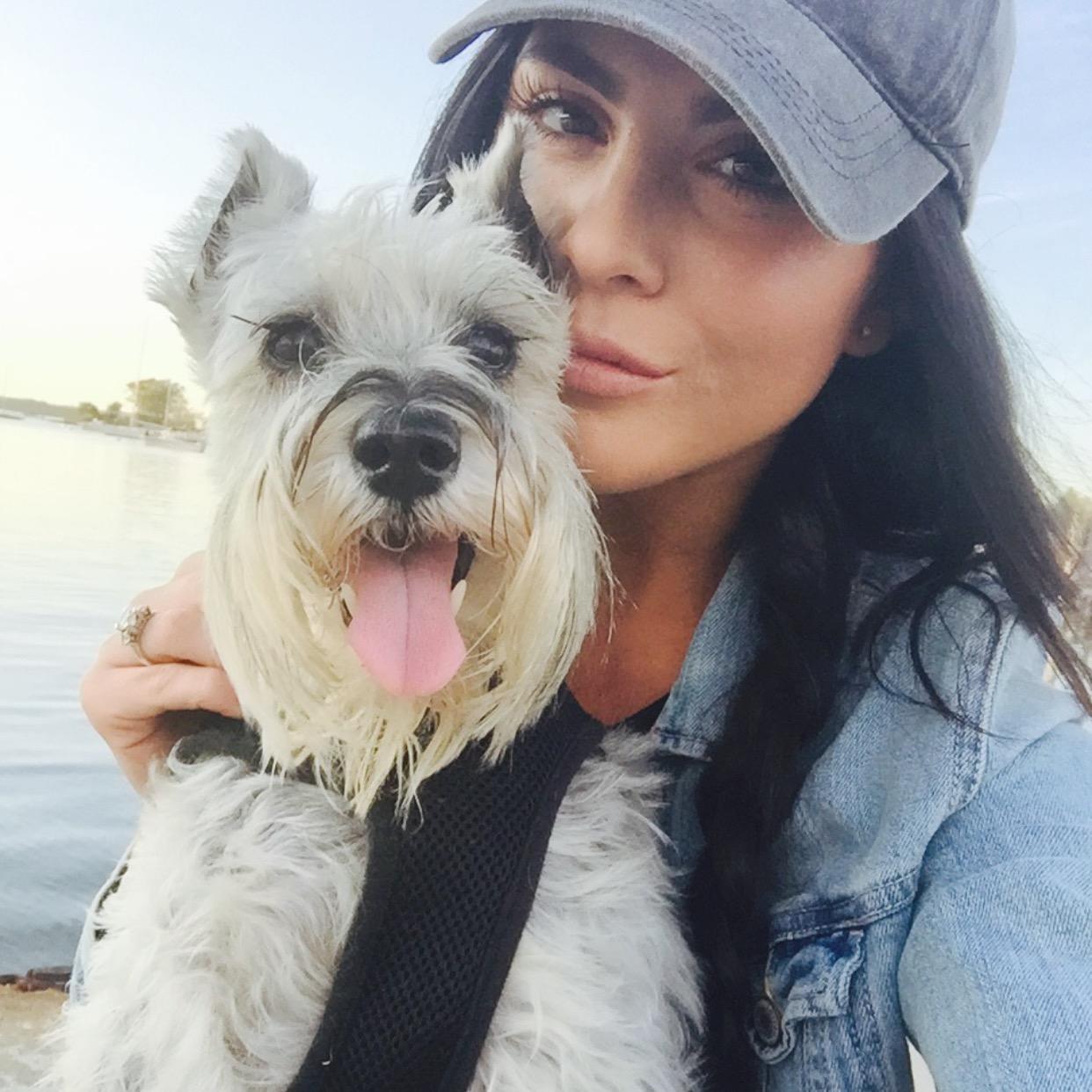 Casten's dog day care