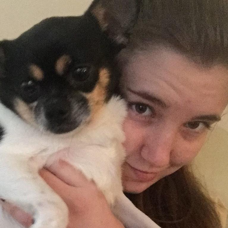 Callia's dog day care