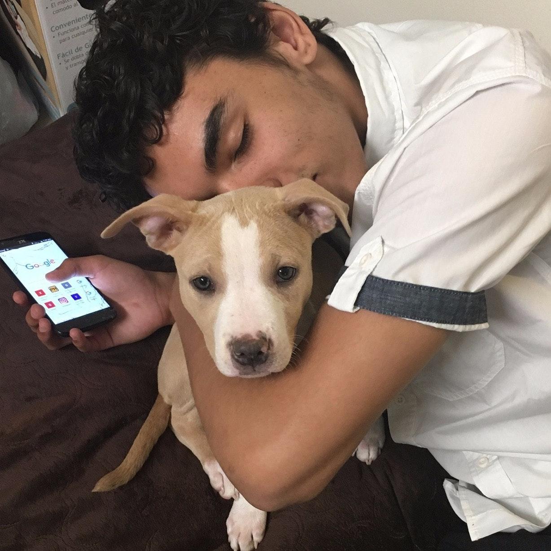 Rajahn's dog day care