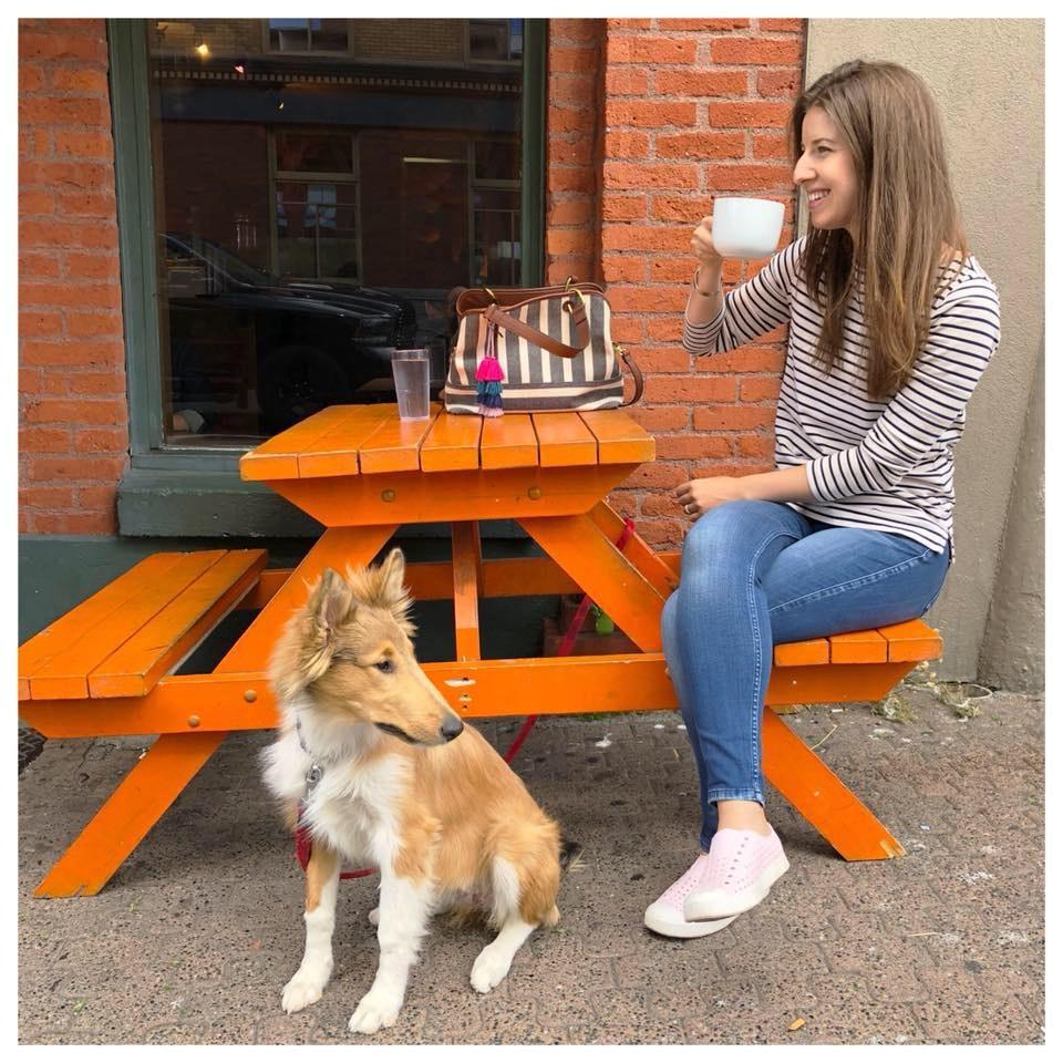 Helene's dog day care