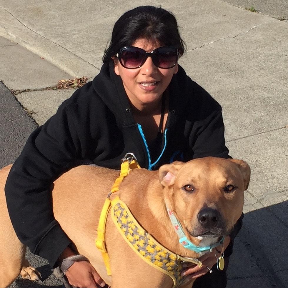 Michelle & Mandar's dog day care