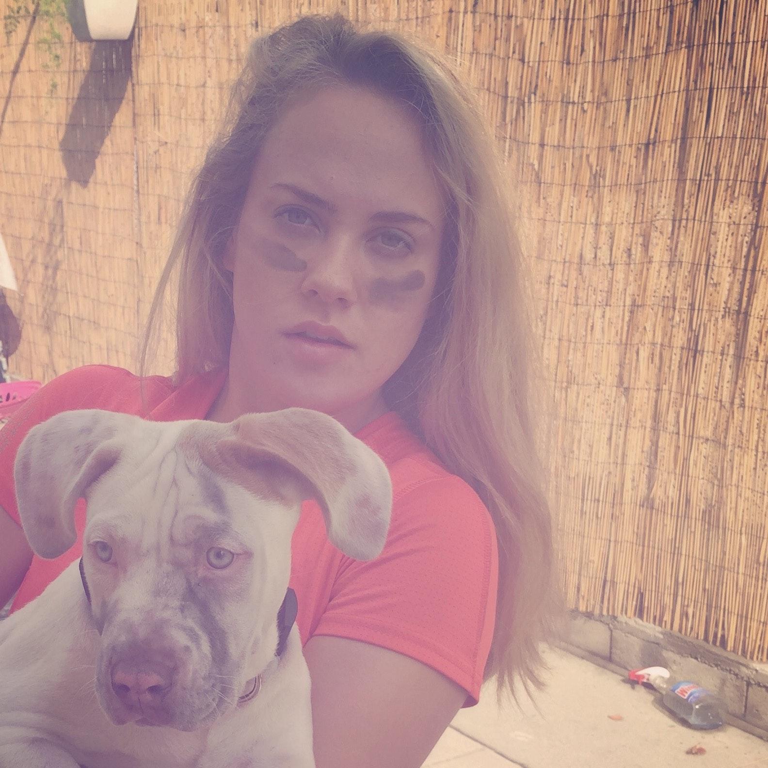 Dominique's dog day care