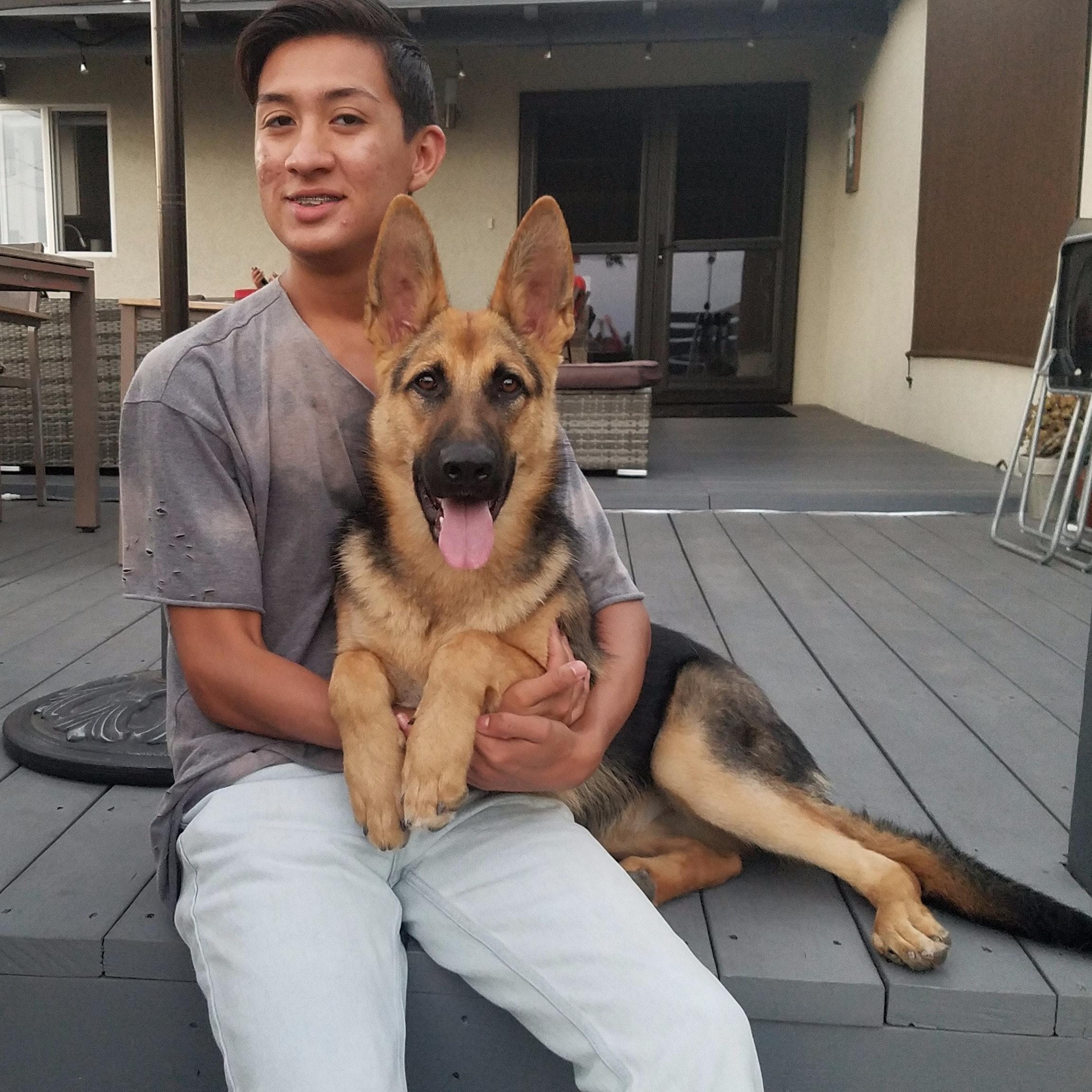 dog walker Brandon