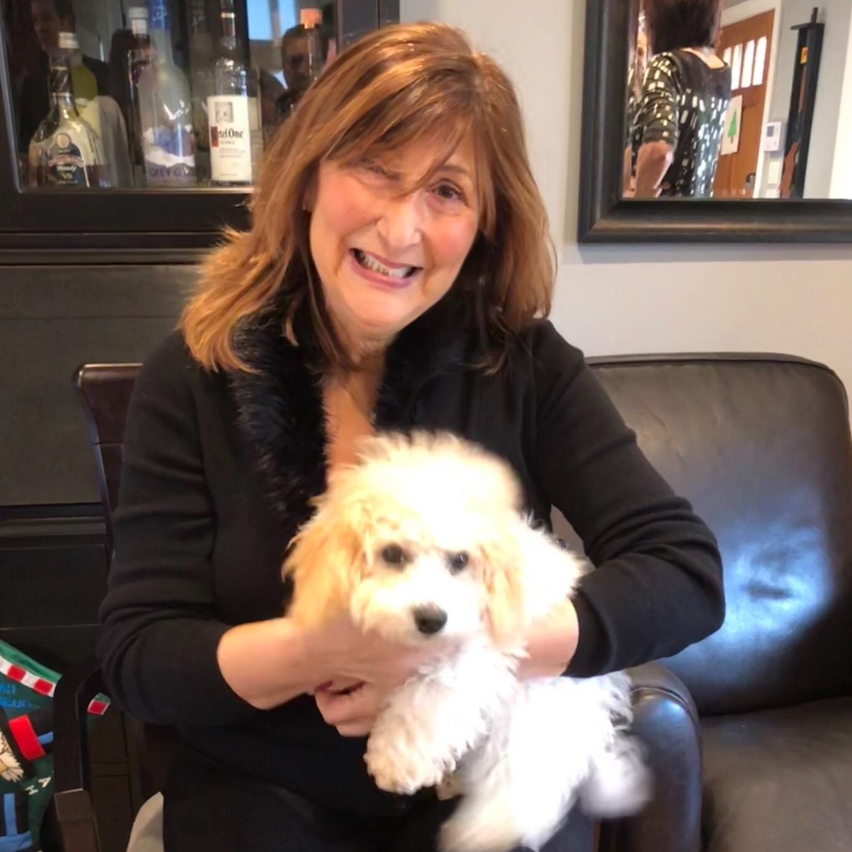 Rosalie's dog day care