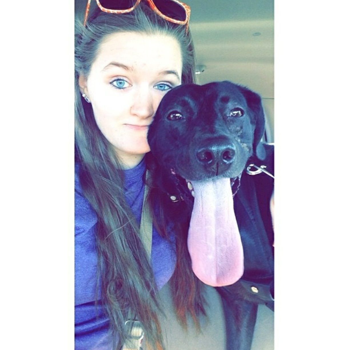 dog walker Ashlynn