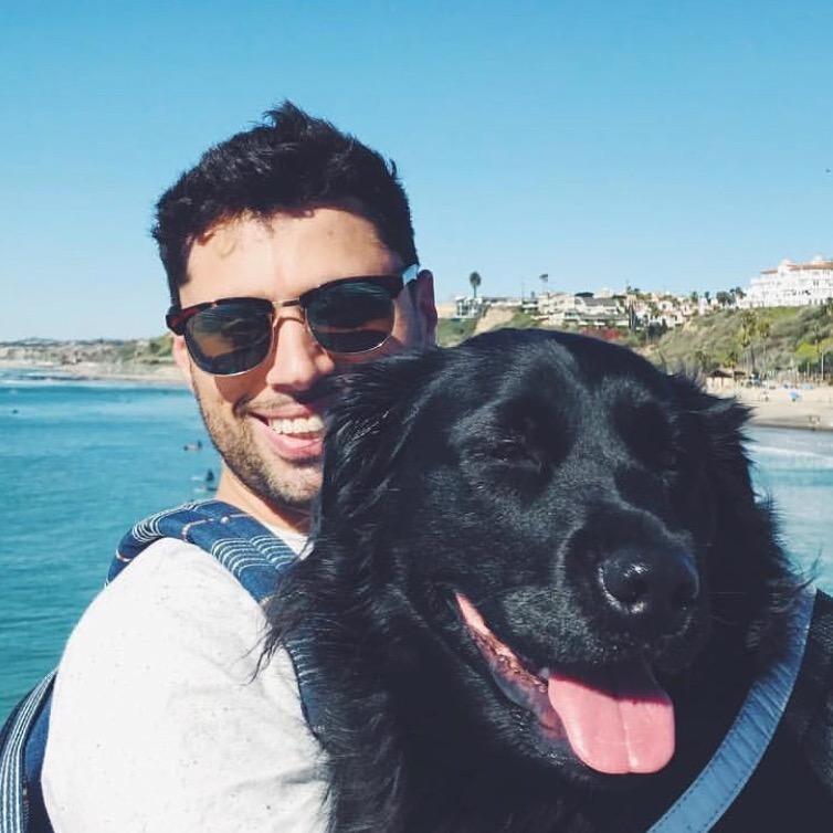 Joe's dog boarding