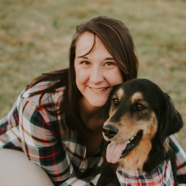 Tessa's dog day care