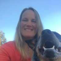 "Linnea ""PeeBee""'s dog day care"