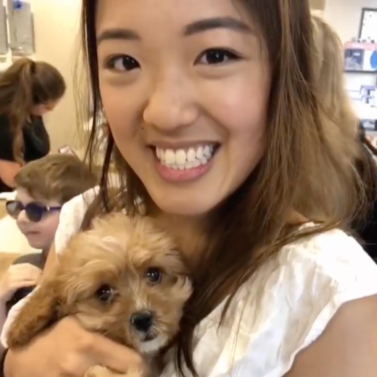 Cecilia's dog day care