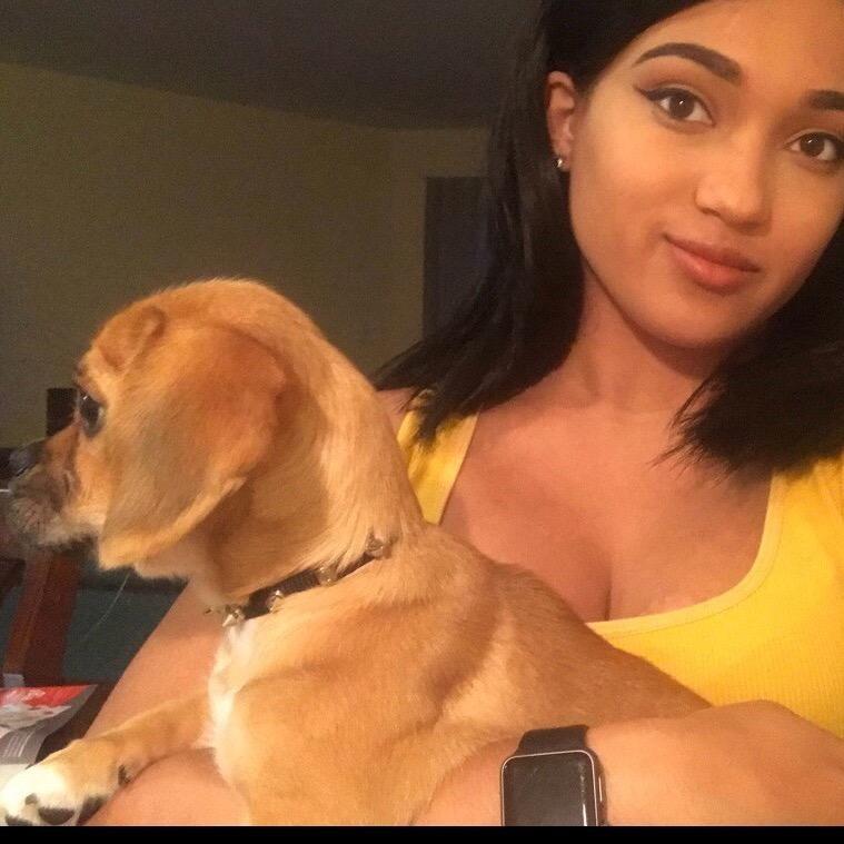 Ilana's dog day care