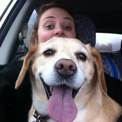 Deana's dog day care