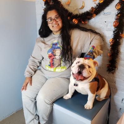 Jasmine's dog day care