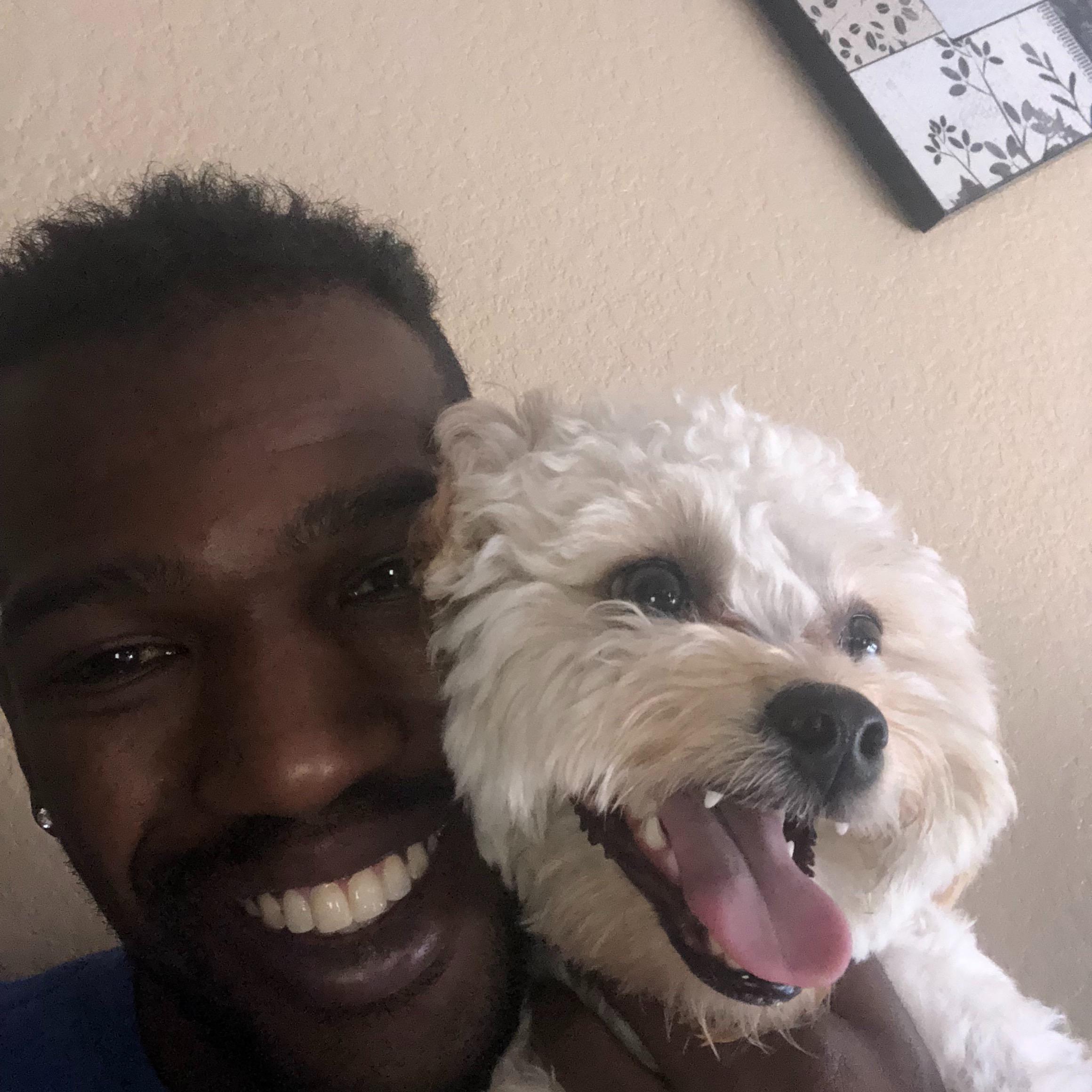 Preston's dog day care