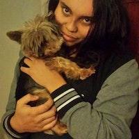 Maya's dog day care