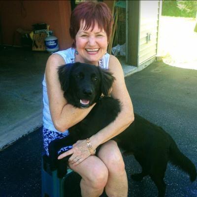Jolanta's dog day care