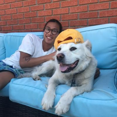Tyler's dog boarding