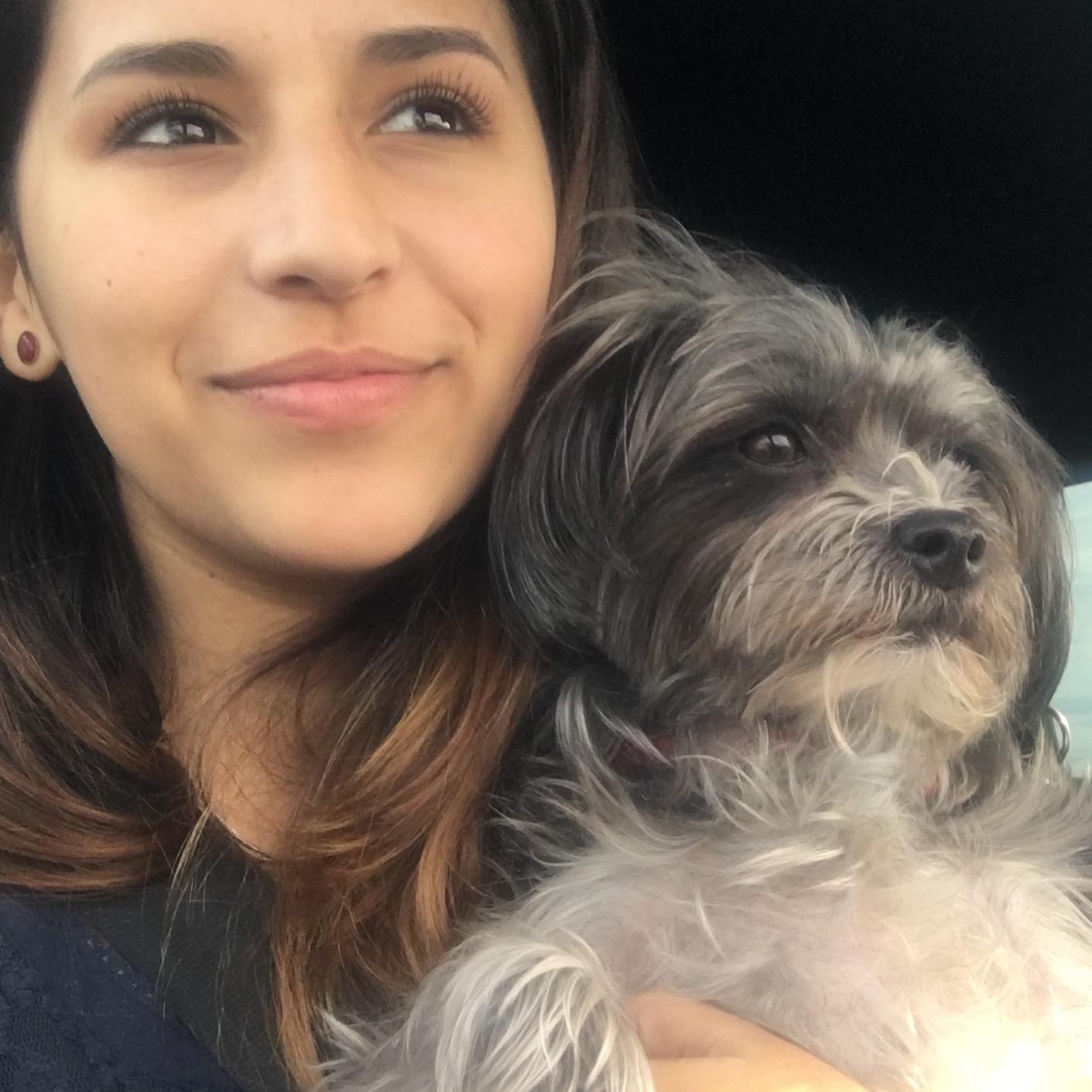 Erika's dog boarding