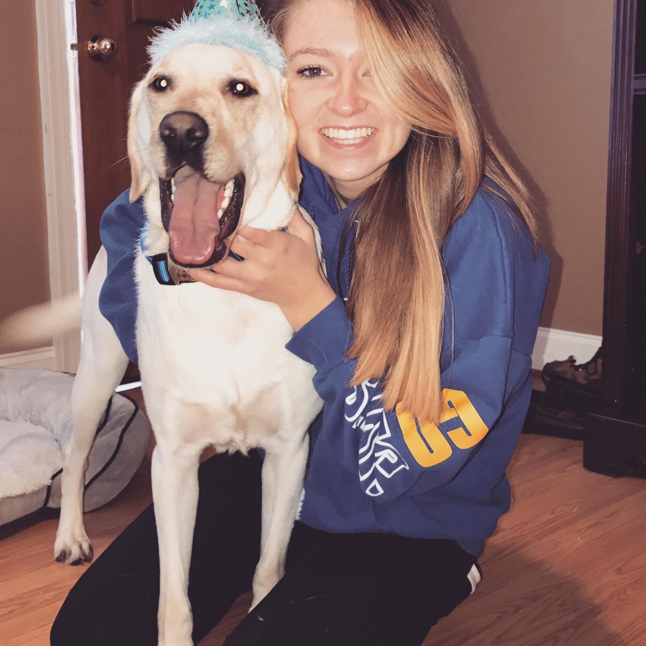 Kortney's dog day care