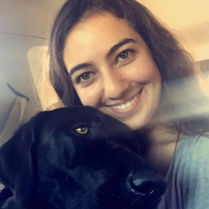 Samaneh's dog boarding