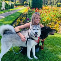 Tristin's dog day care