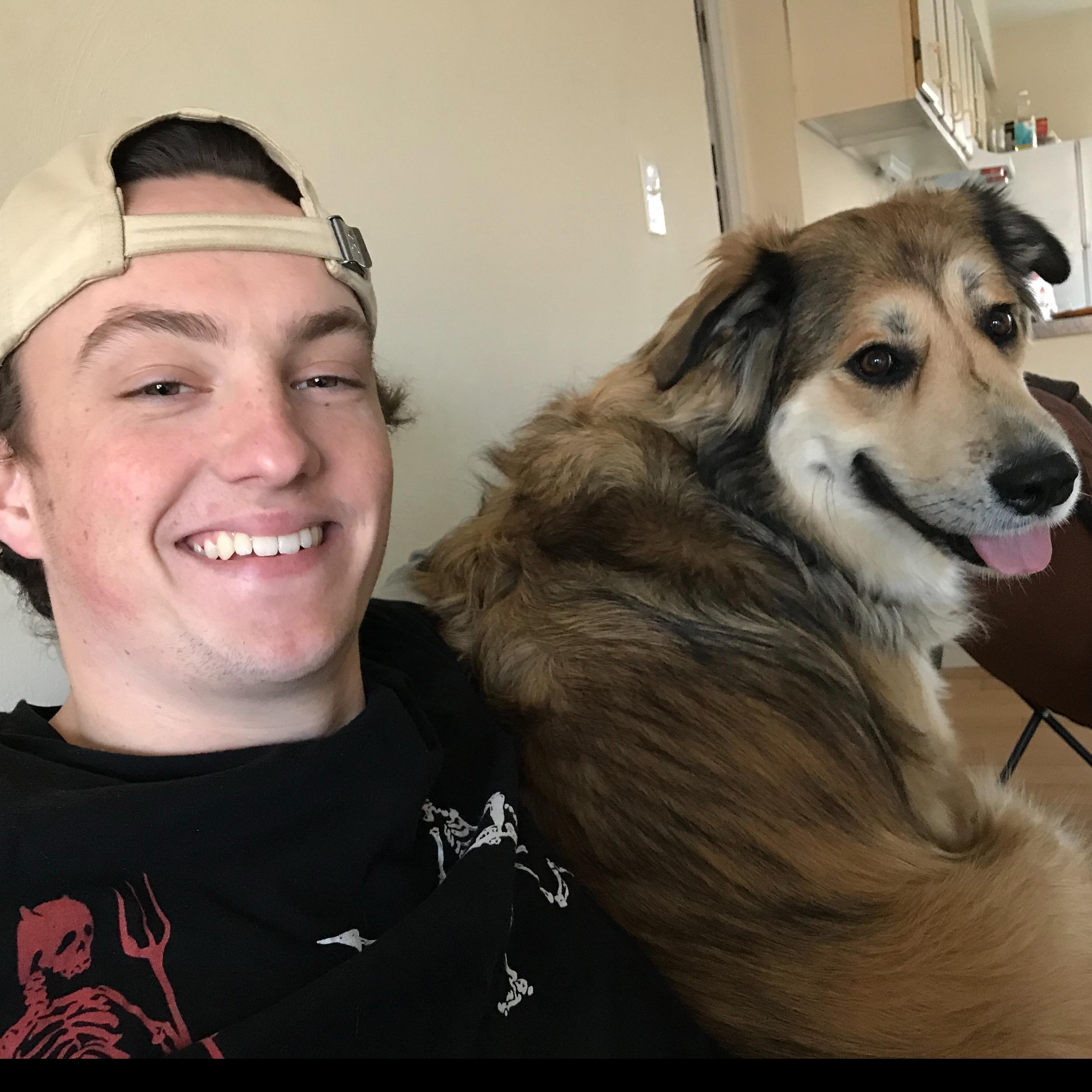 Scott's dog day care