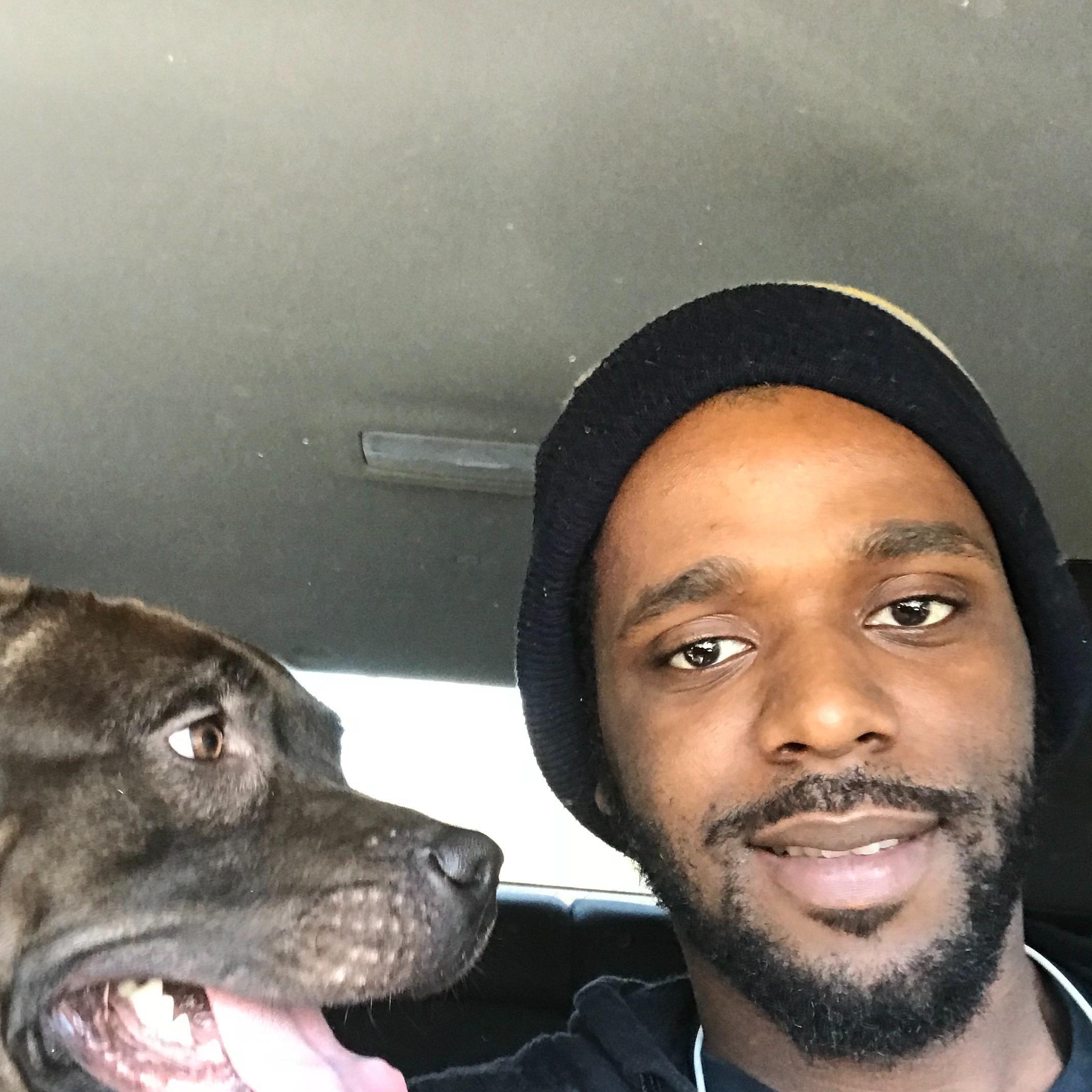 dog walker Morris