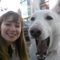 dog walker Alexandria