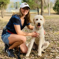 Carmella's dog day care