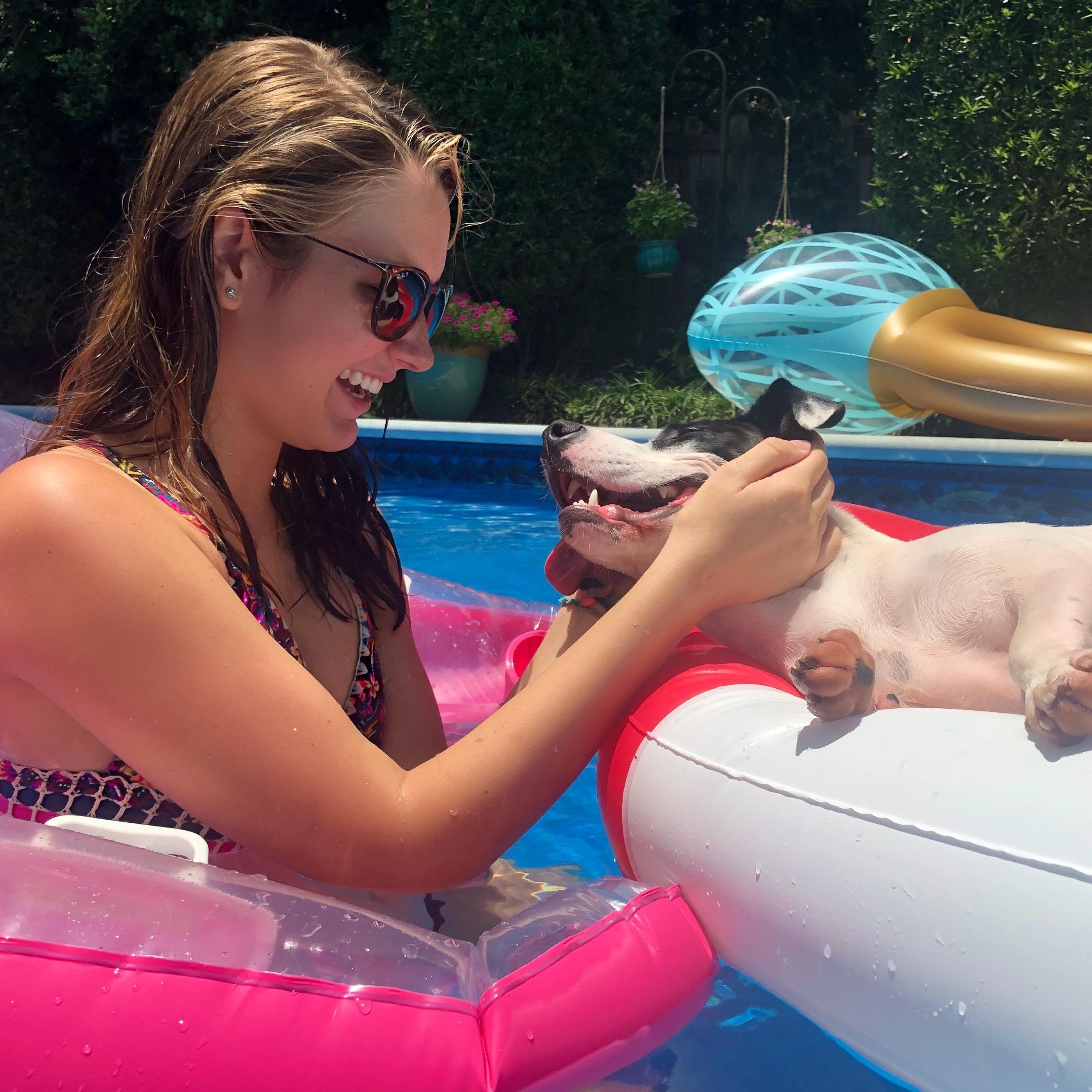 Baylie's dog day care