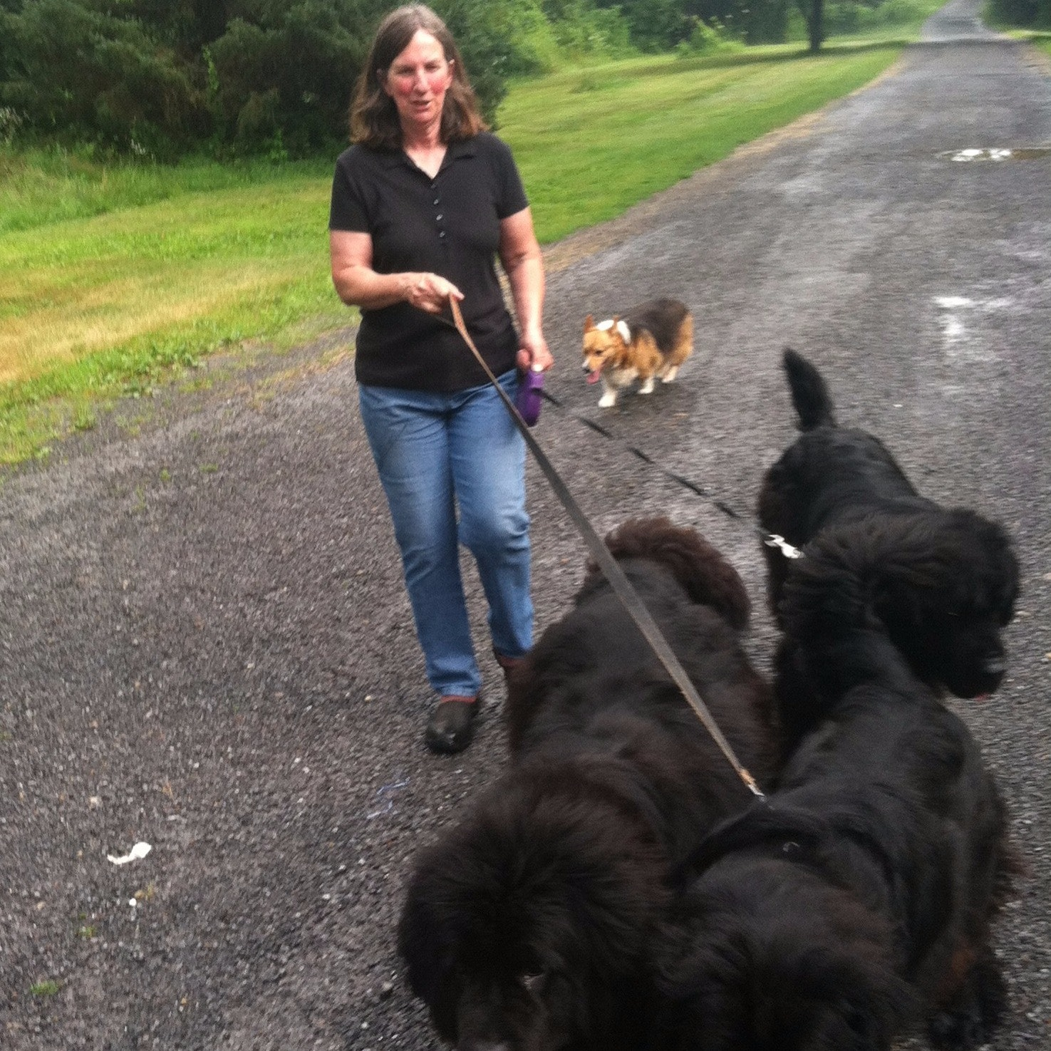 dog walker Mary Ann